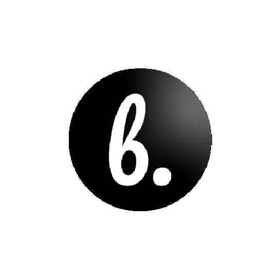 Bottish Logo